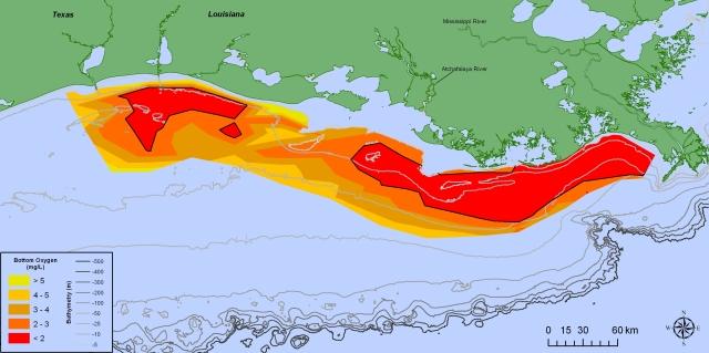 Bottom water dissolved oxygen measured on the 2014 shelfwide cruise. Source: Nancy N. Rabalais, LUMCON, and R. Eugene Turner, LSU